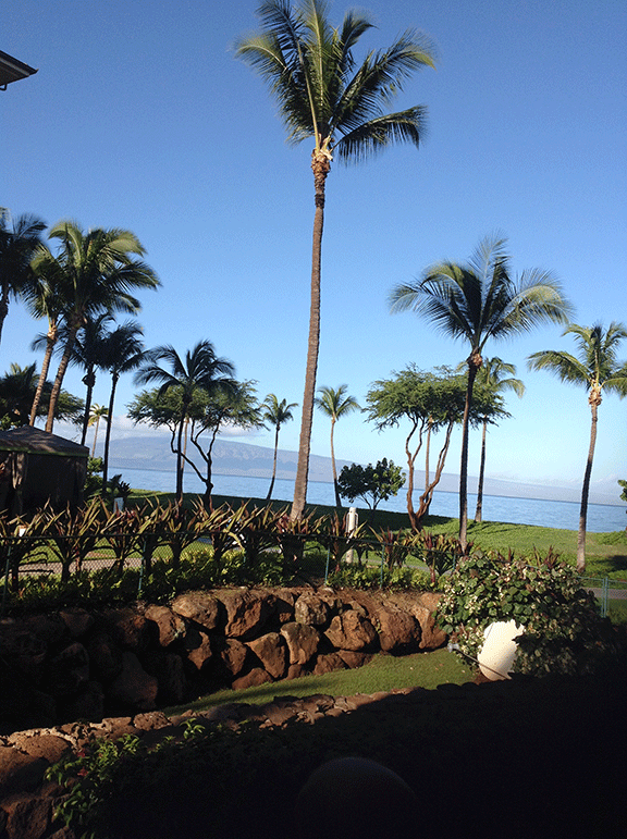 Photo of the view from Lani in Hawaii